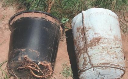 RootTrapper® Pot-in-Pot Insert